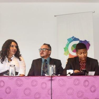 Camara LGBT del Ecuador rueda de prensa sobre lanzamiento - web (11)